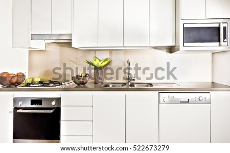Modern kitchen interior illuminated with lights, oven and gas cooker have attached to the pantry cupboard, flower pot near the wash basin, ceramics and fruits close to cookers.