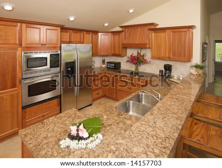 Modern Kitchen with brushed aluminum appliances. - stock photo
