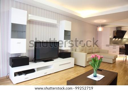 Modern living-room - stock photo