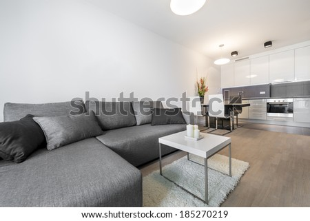 Modern living room interior with kitchen in background - stock photo