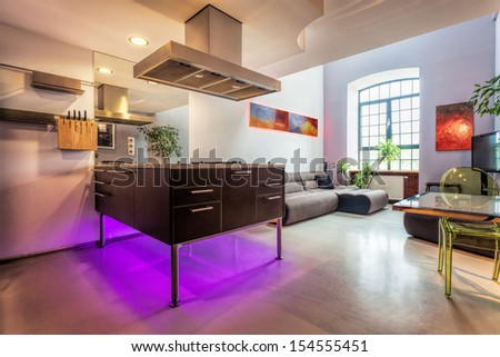 Modern loft interior, kitchen and living room with abstract paintings in a background