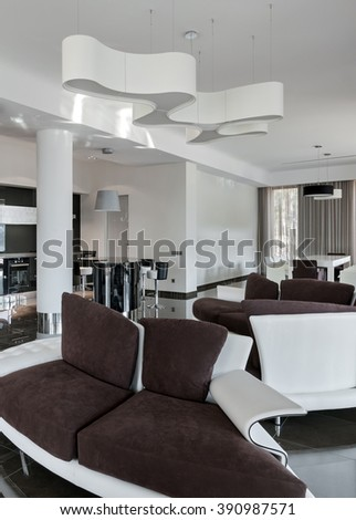 Modern Luxury Interior In Minimalistic Style: Living Room And Kitchen In  Daylight Part 92