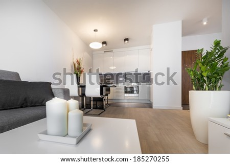 Modern luxury living room interior design with candle - stock photo