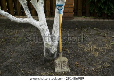 Modern metal shovel at the tree on the ground in the garden - stock photo