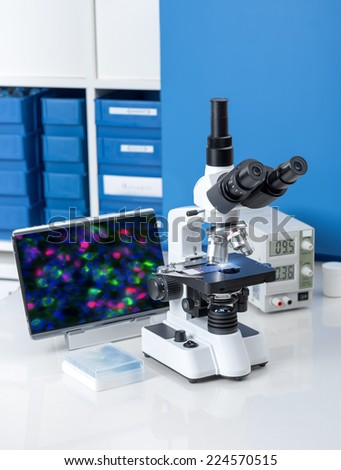 Modern microscope station with atibody-stained tissue sample image on the screen - stock photo