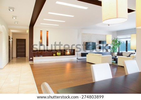 Modern parter house with open space - stock photo