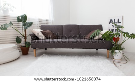 Modern Studio Apartment With Living Plants. Gray In The Interior. Sofa In  The Living