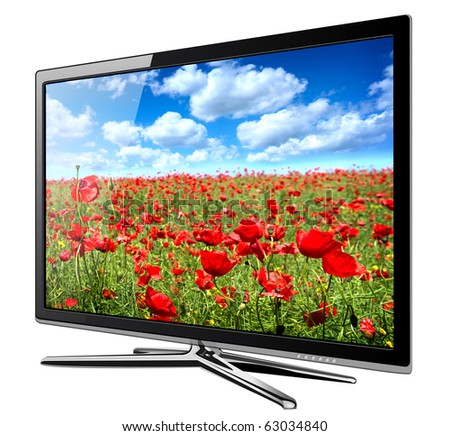 Modern TV lcd, led with wild poppy flowers on screen - stock photo