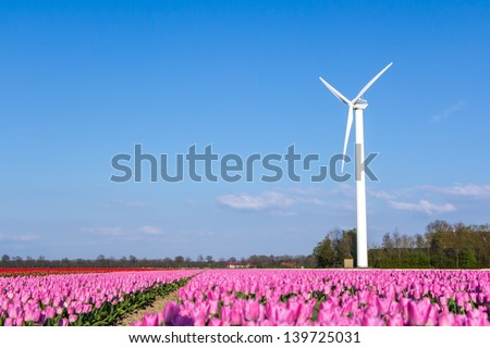 Modern windmill with a pink tulip field - stock photo