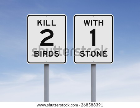 Modified speed limit signs indicating Kill Two Birds With One Stone  - stock photo