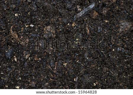 Moist Organic Soil - stock photo