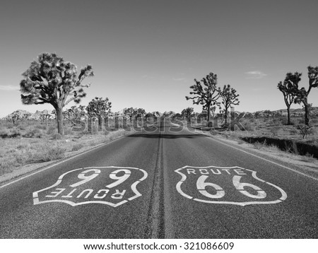 Mojave desert route 66 pavement sign with Joshua Trees in black and white. - stock photo