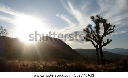 Mojave Sunset - stock photo