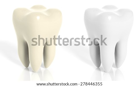 Molar teeth white and yellow isolated on white background - stock photo