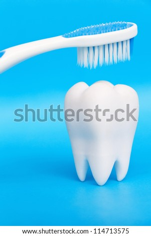 Molar With Brush,dental concept - stock photo