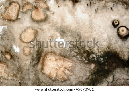 Mold fungus and stained textured wall surface. - stock photo
