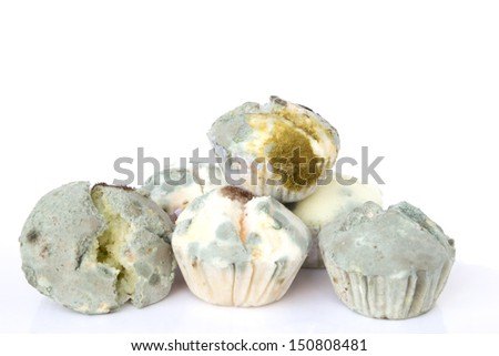 Mold growing on bread isolated on white background - stock photo