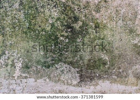 Mold growth and water stains on the ceiling of an abandoned house - stock photo