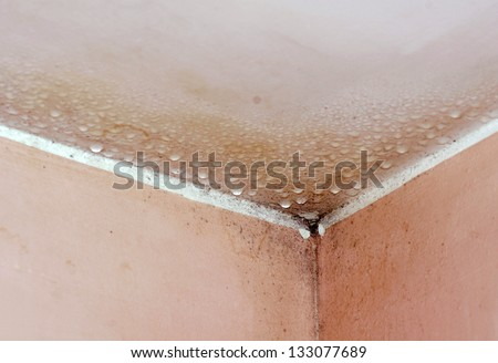 Mold in a edge of a room - stock photo