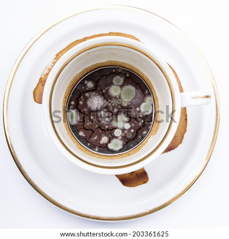 mold in the unwashed cup after cup of coffee on white background - stock photo