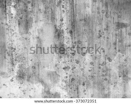 mold on white wall background - stock photo