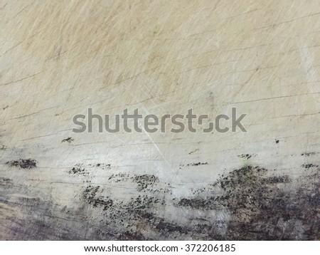 Mold on wood - stock photo