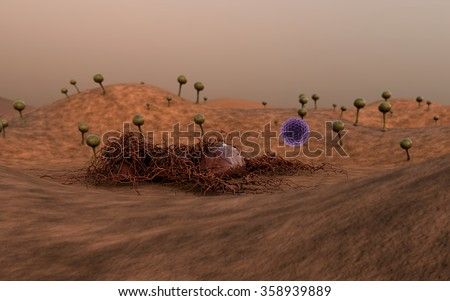 Mold spores, fungus spores, fungus on the leather surface, fungus releases spores, landscape of microworld, spore fallen on the leather surface - stock photo