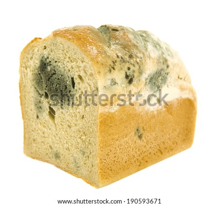 Moldy bread. Isolated on white.  - stock photo