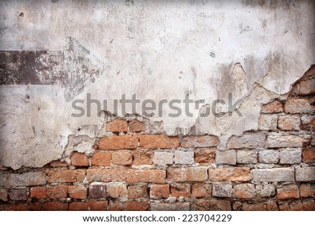 Moldy  brick wall background - stock photo