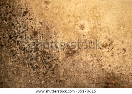 moldy ceiling texture - stock photo