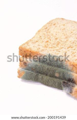 Moldy sliced bread loaf over a white background - stock photo