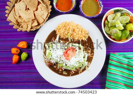Mole enchiladas mexican food with chili sauces and nachos lemon habanero - stock photo