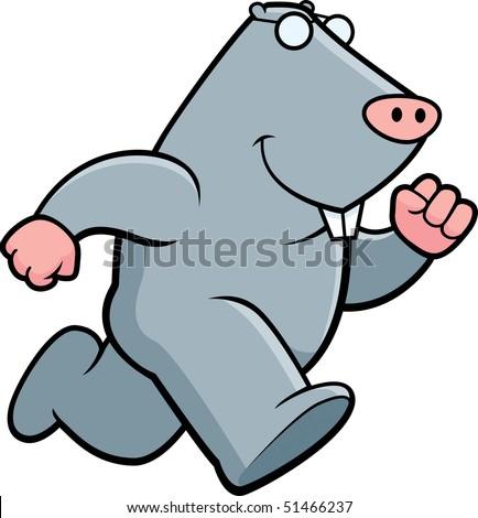 Mole Running - stock photo