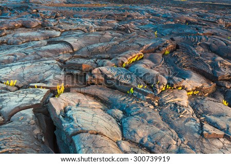 Molten cooled lava landscape in the evening in Hawaii Volcanoes National Park, Big Island, Hawaii - stock photo