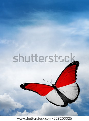 Monaco, Indonesia flag butterfly flying on sky background - stock photo