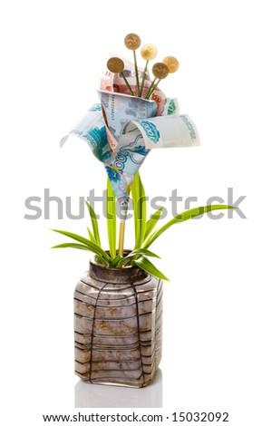 Monetary tree on a white background - stock photo