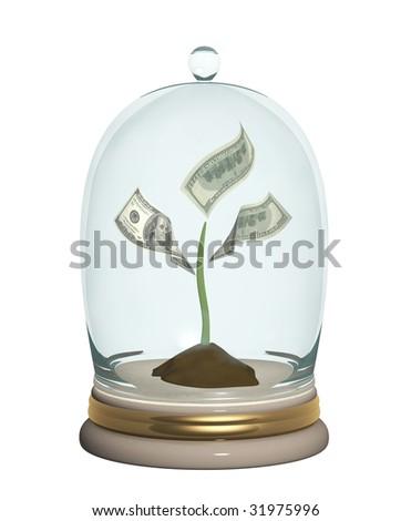 Monetary tree under a glass cap - stock photo