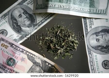 Money and Marijuana - stock photo
