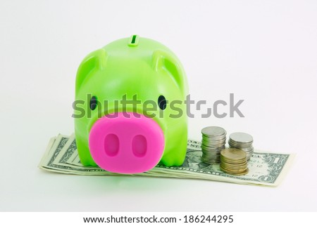 Money and piggy bank isolated on white background, saving money concept.