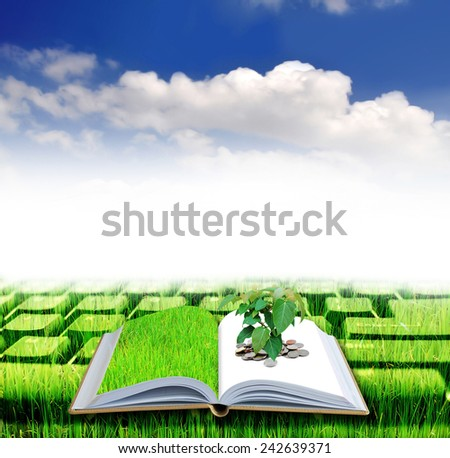 Money book opening on green filed background - stock photo
