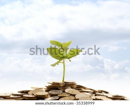 Money conceptual shoot - stock photo