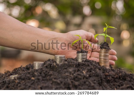 Money, Financial, Business Growth concept, Close-up Of Hand Put Money Coins To Soil - stock photo