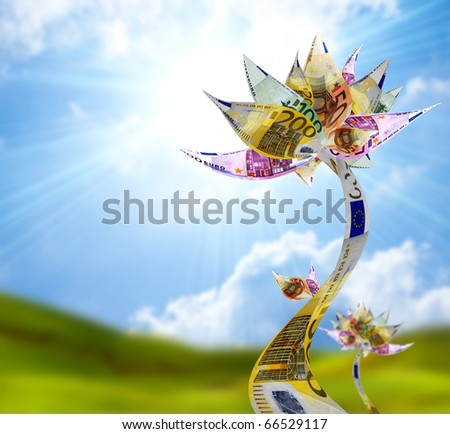 Money flower  with euro bank notes - stock photo