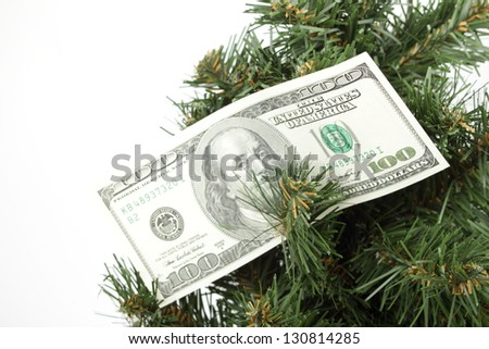 Money for the Christmas Tree on white background - stock photo