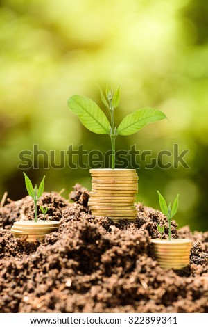 Money Gold coin stack growing graph on ground with green bokeh background;Trees growing on gold coin;Business Finance and Money concept