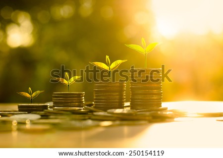 Money growing concept,Business success concept,Trees growing on pile of coins money over sun flare silhouette style