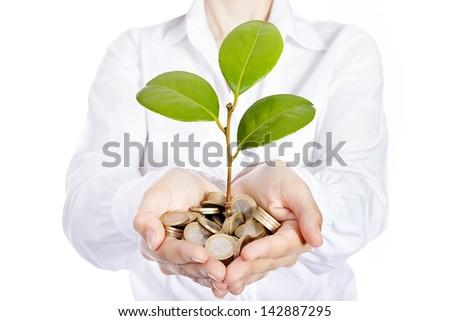 Money growing on businesswoman hands - stock photo