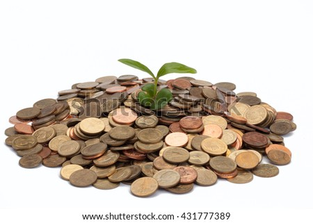 Money grows, plant Growing In Coins. Investment And Interest Concept, white background. Business success concept.