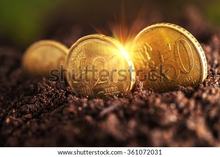Money growth. Euro coins growing from soil.