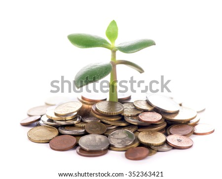Money growth. Investment concept - stock photo